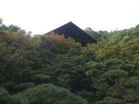 地中に展示される「睡蓮」を見に大山崎山荘美術館へ。|京都府|トラベルjp<たびねす>