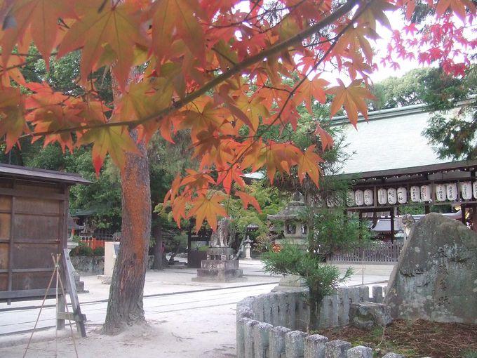 今宮神社は日本三奇祭「やすらい祭」で有名です