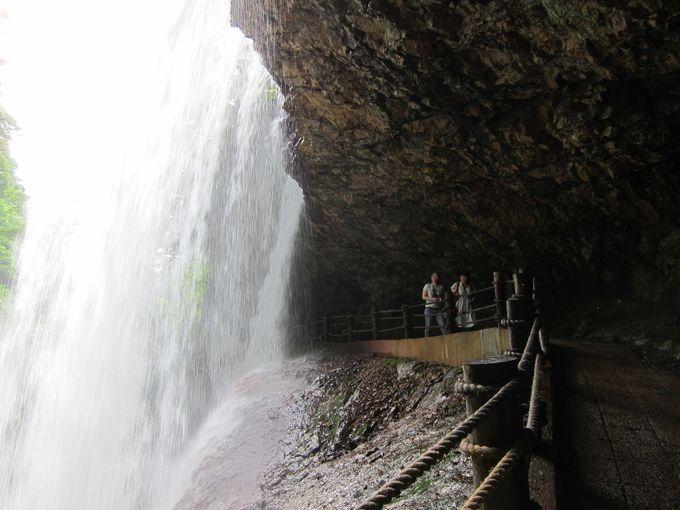 滝の裏側を通ってみよう!