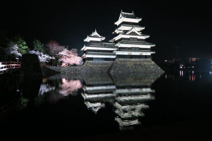 4月上旬〜中旬「松本市」風情ある「松本城」と一面ピンクの丘「弘法山古墳」