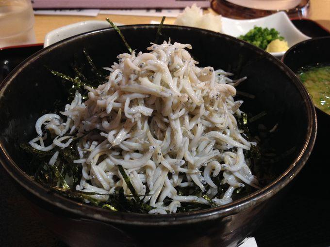 富士盛り丼で佐島しらすをがっつり!