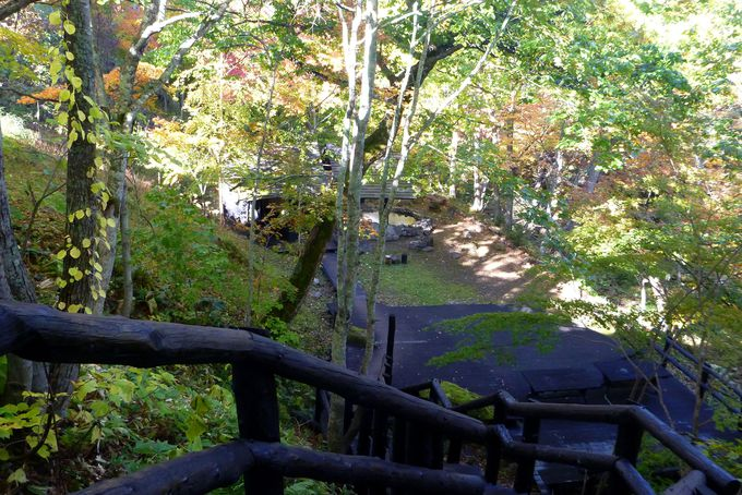 樹齢50年以上もの自然林の中、にあるテラス「緑山䑓」