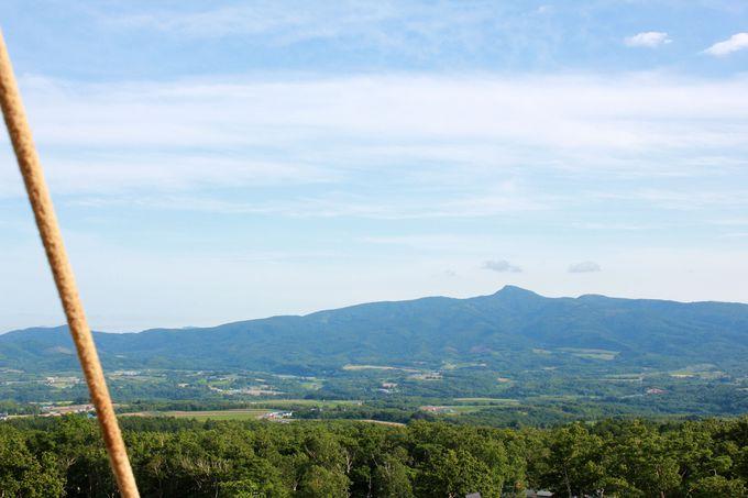 気球からニセコの山々を一望!
