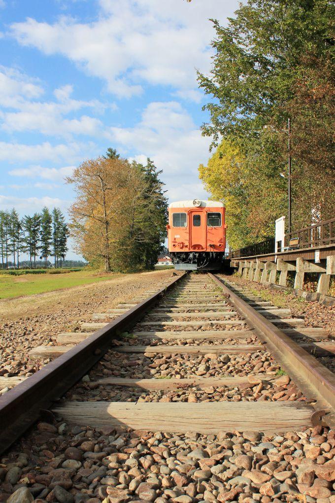 美しいオレンジ色の旧広尾線車両と幸福駅ガーデン
