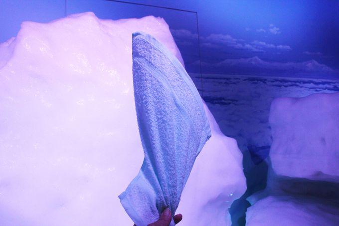 立つタオル!?網走「オホーツク流氷館」でしばれ体験