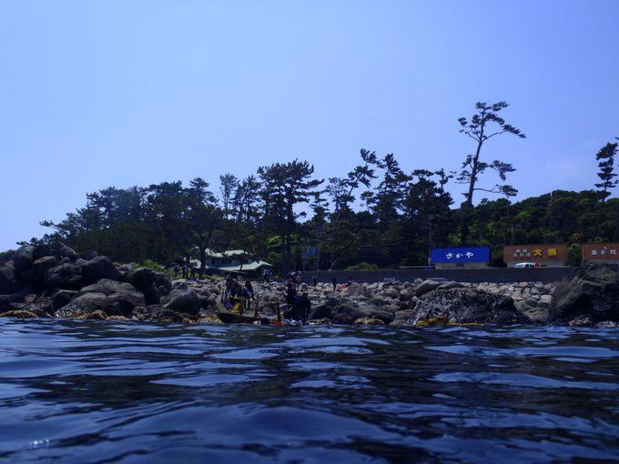 群れ!サンゴ!ウミウシ!好みのダイビングスタイルを見つけよう