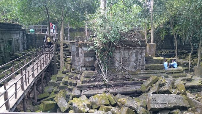 天空の城ラピュタのモデル、生い茂る苔と木の根に圧倒される「ベンメリア遺跡」