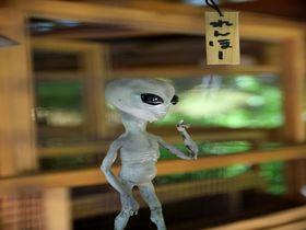紫陽花も真っ青!鎌倉「明月院」で謎の宇宙人れんほーに遭遇