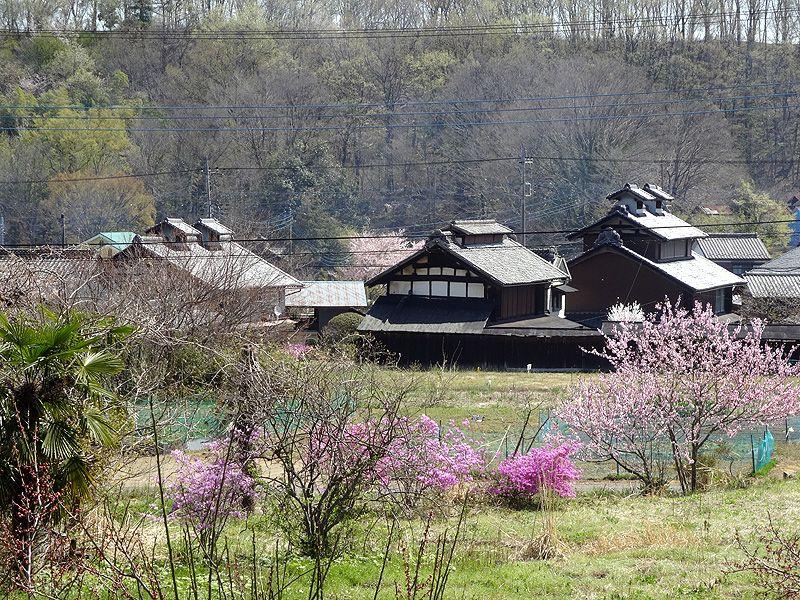 日本三大サザエ堂!原風景に彩られた本庄市・高窓の里の百体観音堂