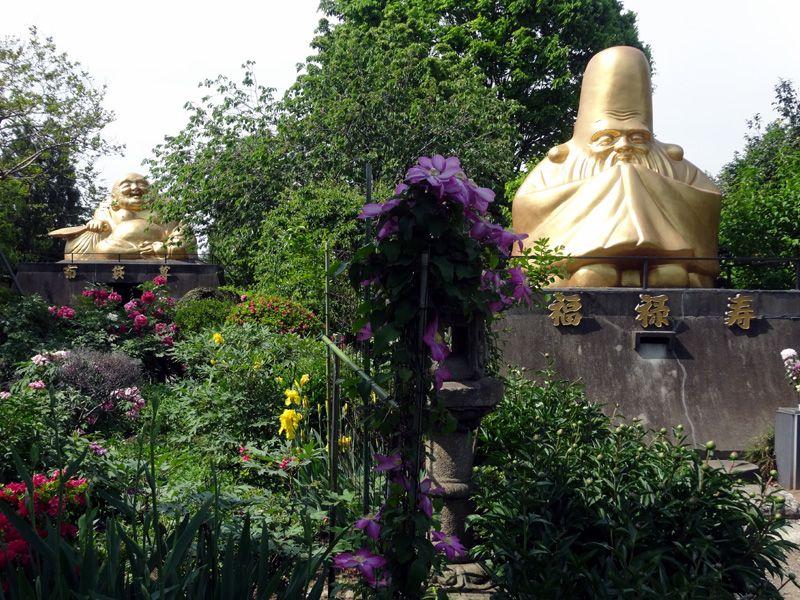 「おみなえし」の大谷山蓮光寺