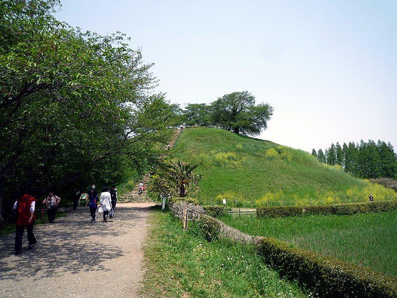 『のぼうの城』の舞台となった古墳