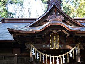 埼玉一ノ宮は3つある!龍神が結ぶ氷川神社「ご来光の道」