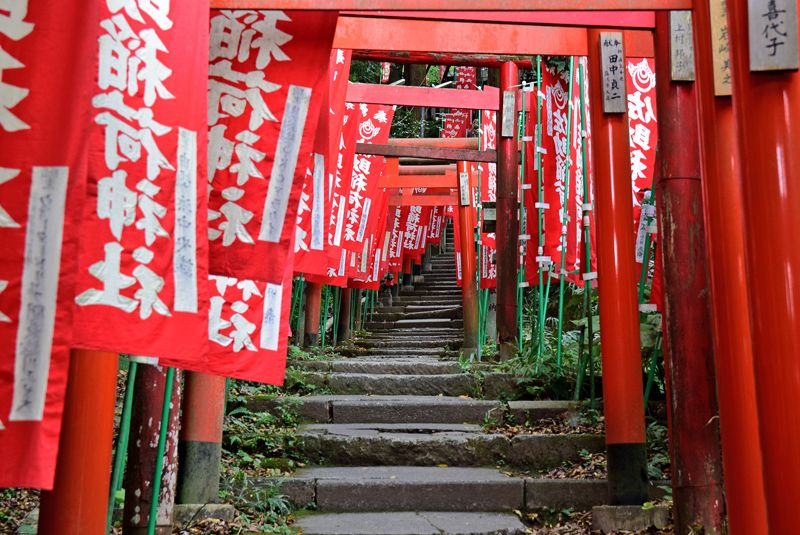 「トリプル3」のパワースポットで紅葉狩り!鎌倉・源氏山