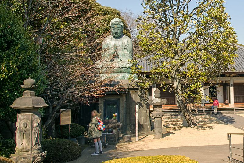 谷中霊園の始まりは天王寺