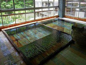 黄金色の湯の花が舞う山梨県「元湯 蓬莱館」はアットホームな秘湯|山梨県|トラベルjp<たびねす>