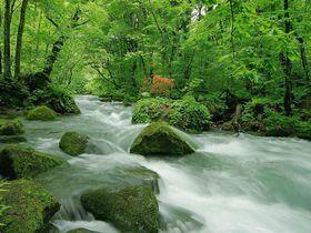 渓流散策ならココ!青森「奥入瀬渓流ホテル」星野リゾート流四つのおもてなし|青森県|トラベルjp<たびねす>
