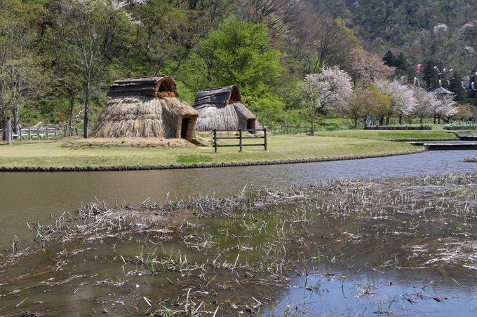縄文式の住居が再現された歴史公園も