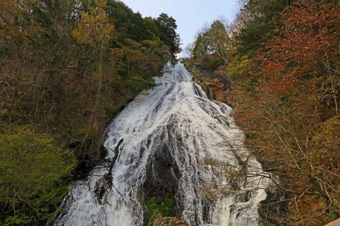 日光の女性的な滝!? 滝壺からの眺めは迫力満点「湯滝」