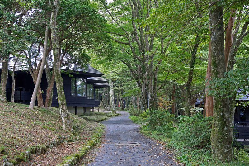 箱根の自然をそれぞれのスタイルで!「芦ノ湖キャンプ村」