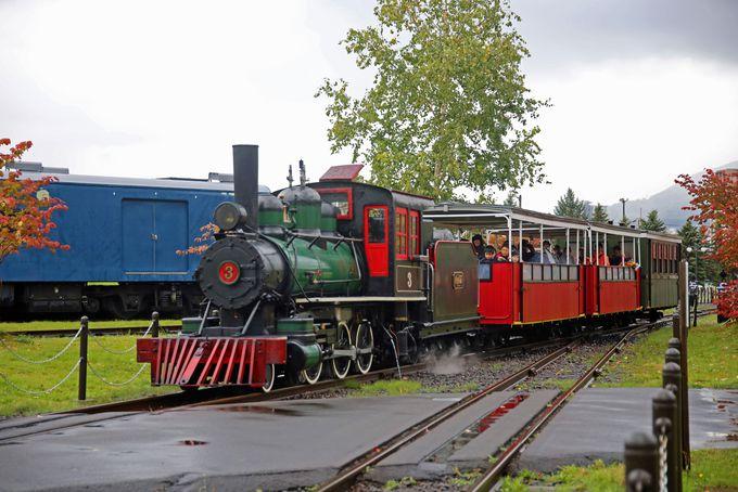 本物の蒸気機関車を運転