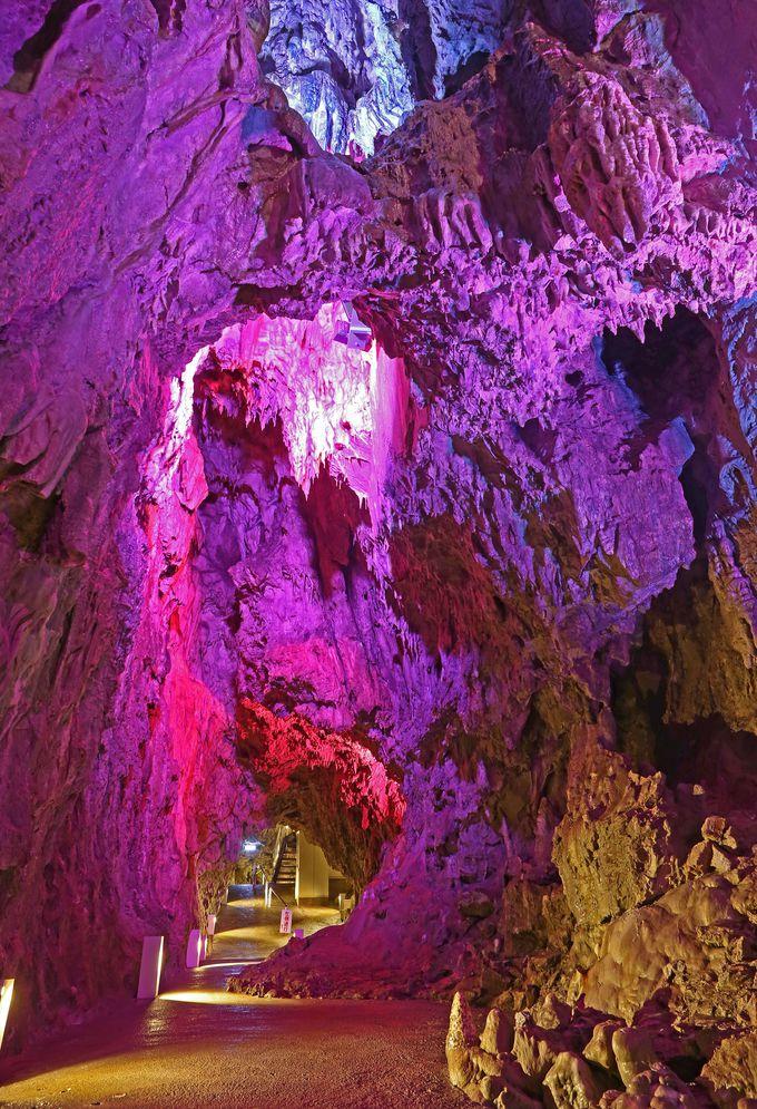 太古の地球を彷彿させる鍾乳洞の圧倒的な迫力