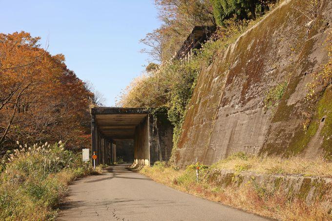 トンネル、落石覆いも随所に残る