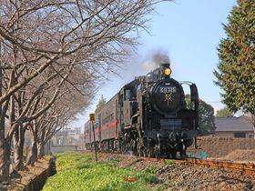 栃木・真岡鐡道真岡駅で、SLの迫力と鉄道旅行の魅力を体感しよう!|栃木県|トラベルjp<たびねす>