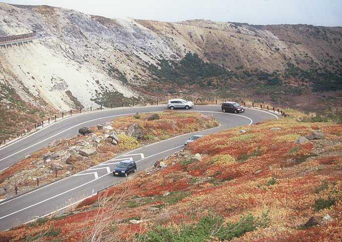 「日本の道100選」にも選ばれた観光有料道路