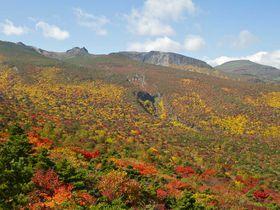 絶景!日本百名山「安達太良山」の360度大パノラマ、天空の紅葉じゅうたん