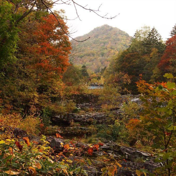 他の場所より一足早く訪れる秋の景観