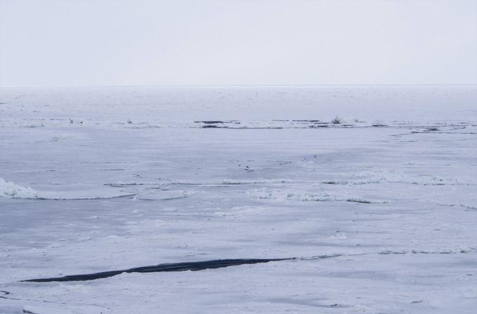 流氷の景色を撮影する際はプラス補正で