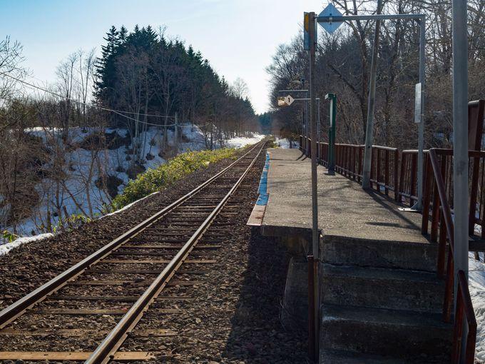 林の中にある駅のプラットホーム