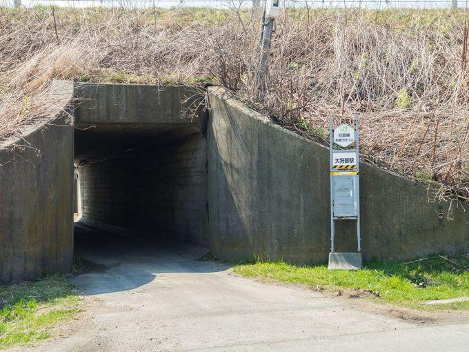 駅への入り口は、国道235号線ではなく脇道から