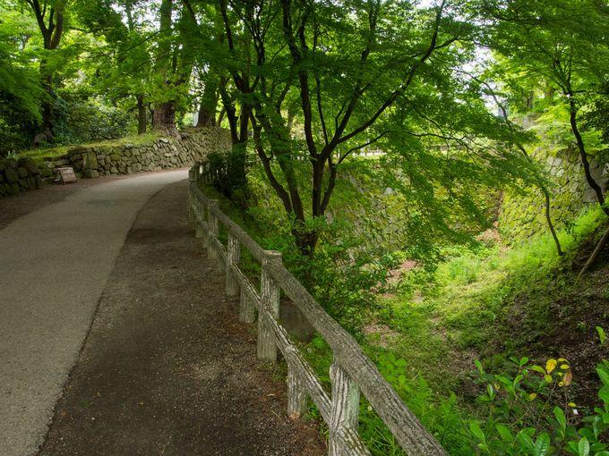 木々の中を心地よく散策できる歴史公園