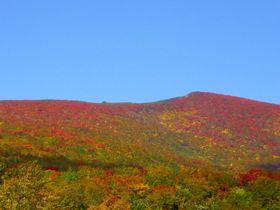 紅葉で赤色になる山!栗駒山(宮城側)いわかがみ平・花山峠|宮城県|トラベルjp<たびねす>