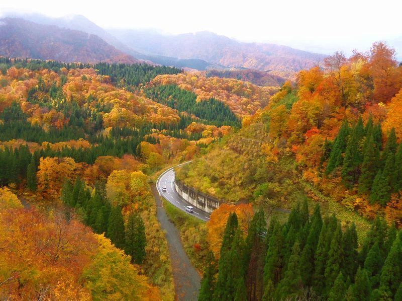 ちょっと足を伸ばして〜紅葉が広がる栗駒山へドライブ