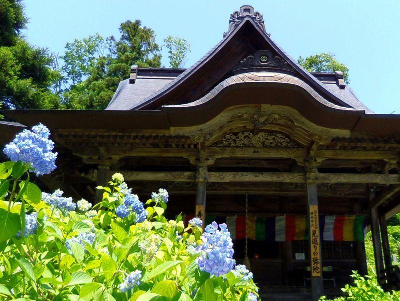 前田慶次の晩年が偲ばれる〜あじさいに囲まれた「堂森善光寺」
