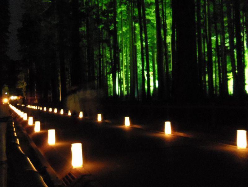 円通院だけじゃない〜松島のライトアップやイベントも同時開催