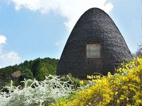 障害を超える個性の輝き。生の芸術を観る「ねむの木こども美術館」|静岡県|トラベルjp<たびねす>
