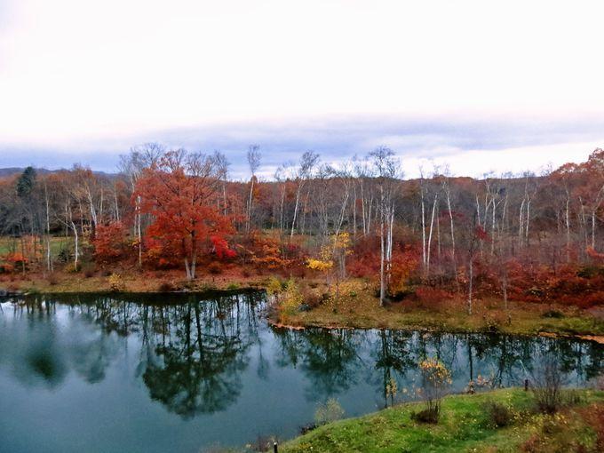 宿泊なら露天風呂から紅葉が楽しめる「函館大沼プリンスホテル」がオススメ♪