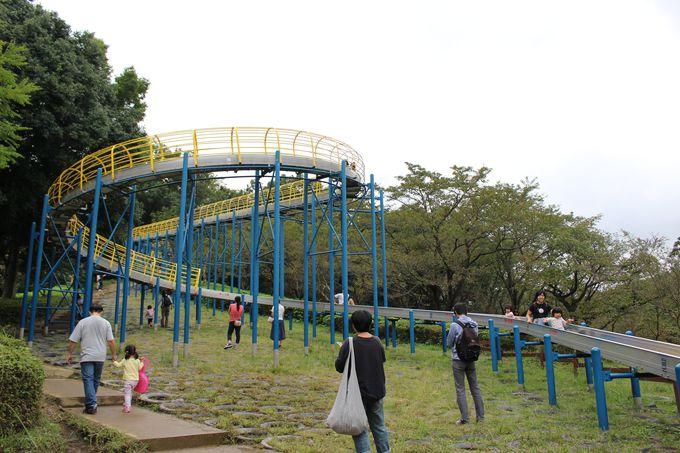 横浜で一番長〜いローラーすべり台!