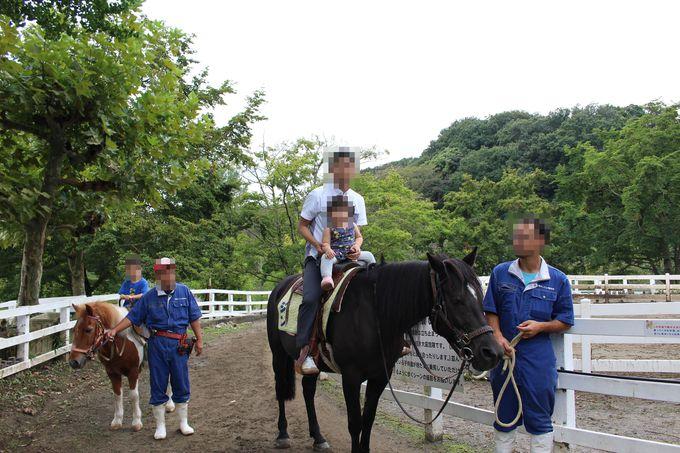 「雪印こどもの国牧場」で乗馬体験!
