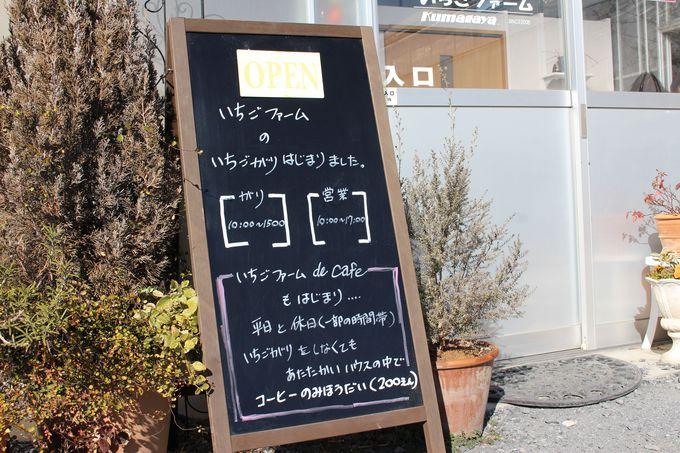 きれいなハウス内はカフェ利用可!「いちごファームKumagaya」