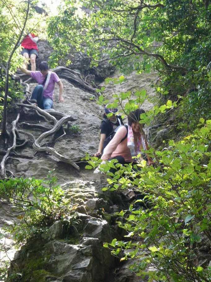 断崖絶壁の神窟に建つパワースポット!鳥取の国宝「三徳山投入堂」