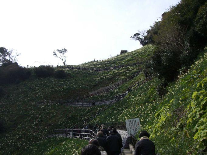 瀬戸内海最大の島・淡路島