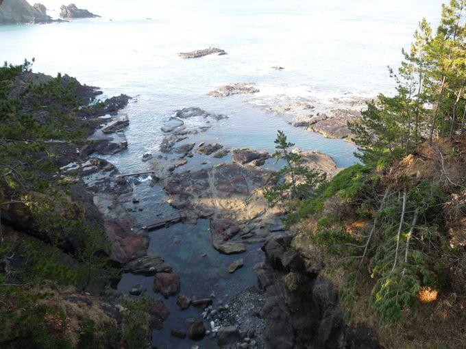 冬の日本海の荒波にさらされる『千畳敷岩』