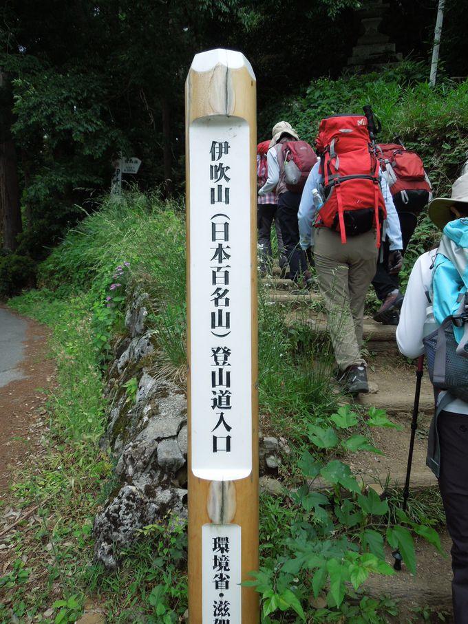 ミニチュア富士と呼ばれる『伊吹山』で富士登山シュミレーション