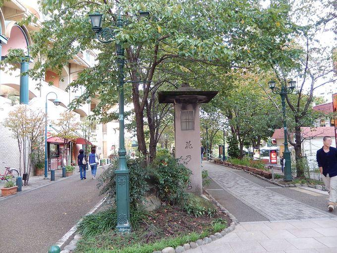 『花のみち』を通って、憧れの宝塚歌劇の本拠地へ