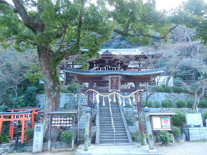 登山口は、その名も珍しい『鐸比古鐸比売(ぬでひこぬでひめ)神社』