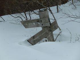 滋賀の赤坂山で雪遊び!スノーシューで心も体もホッカホカ|滋賀県|トラベルjp<たびねす>